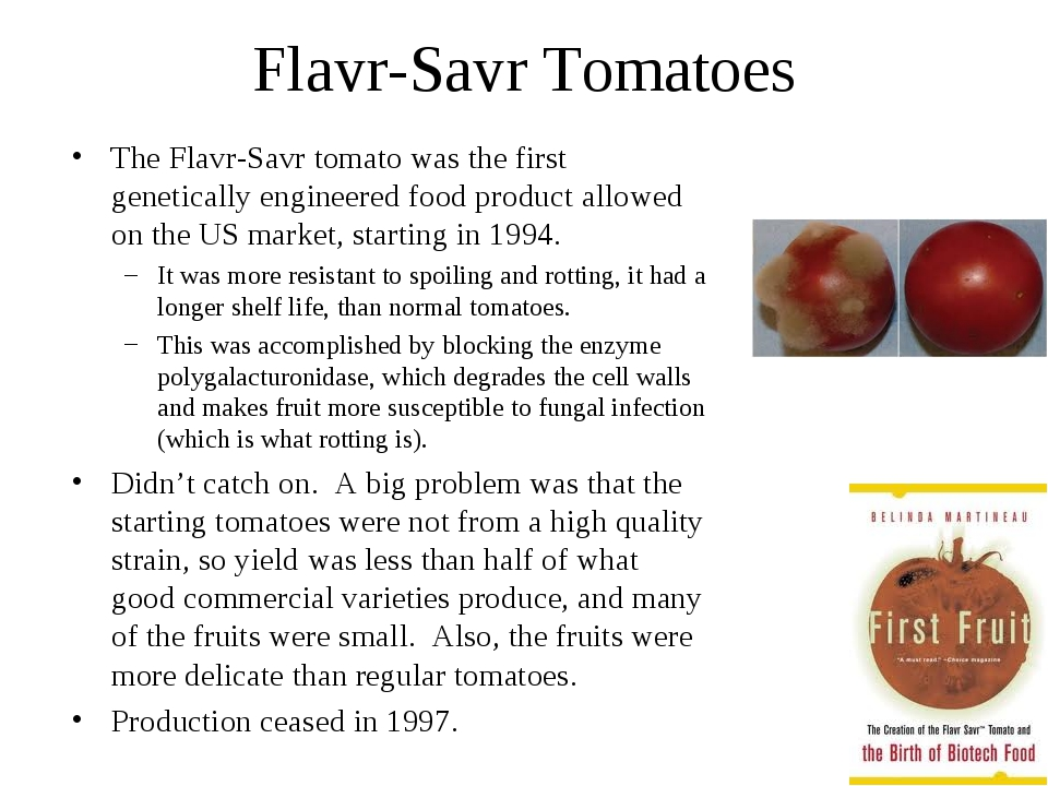 Flavr-Savr Tomatoes The Flavr-Savr tomato was the first genetically engineere...