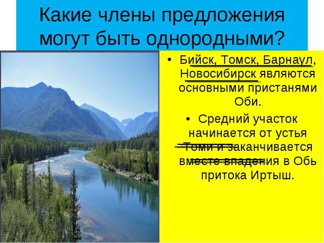 Какие члены предложения могут быть однородными? Бийск, Томск, Барнаул, Новоси...