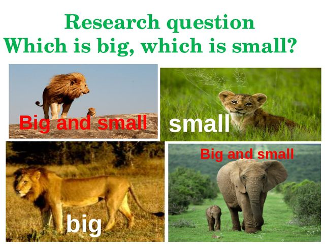 Big and small big small Big and small Research question Which is big, which i...