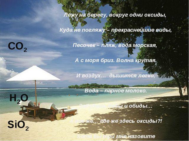 Лежу на берегу, вокруг одни оксиды, Куда не погляжу – прекраснейшие виды, Пес...