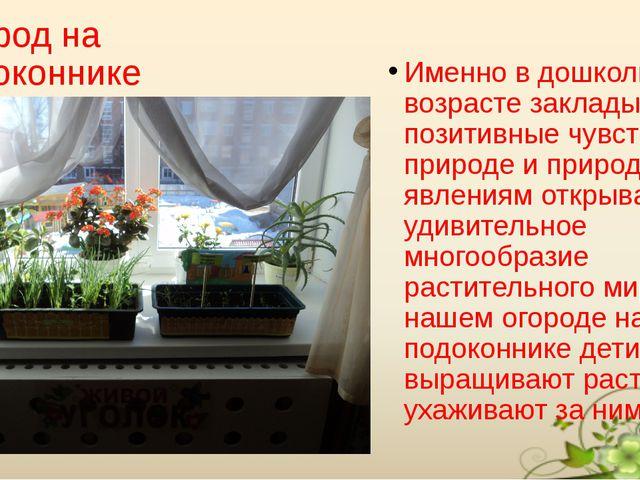 Огород на подоконнике Именно в дошкольном возрасте закладывается позитивные ч...