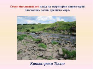 Сотни миллионов лет назад на территории нашего края плескались волны древнего