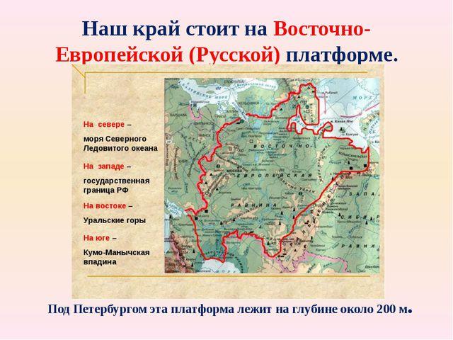 Наш край стоит на Восточно- Европейской (Русской) платформе. карта Под Петерб...