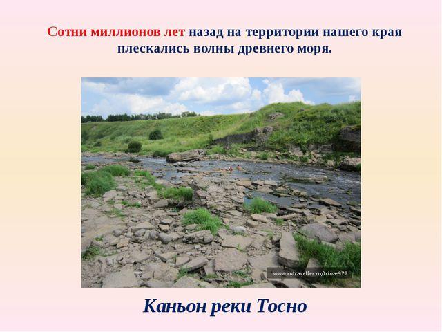 Сотни миллионов лет назад на территории нашего края плескались волны древнего...