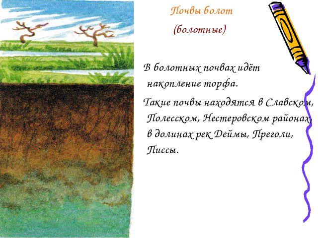 Почвы болот (болотные) В болотных почвах идёт накопление торфа. Такие почвы...