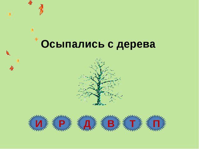 Осыпались с дерева И Р Д В Т П