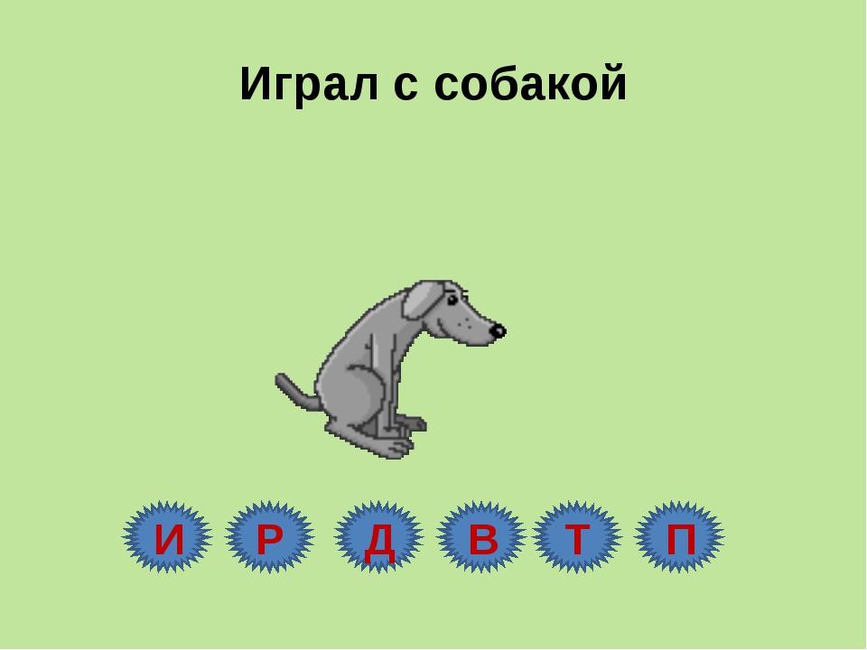 Играл с собакой И Р Д В Т П