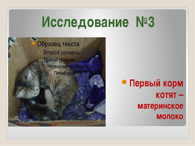 Первый корм котят – материнское молоко Исследование №3