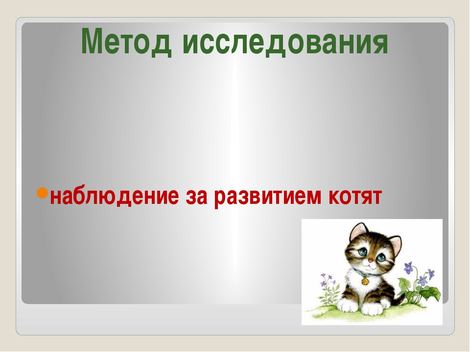 наблюдение за развитием котят Метод исследования