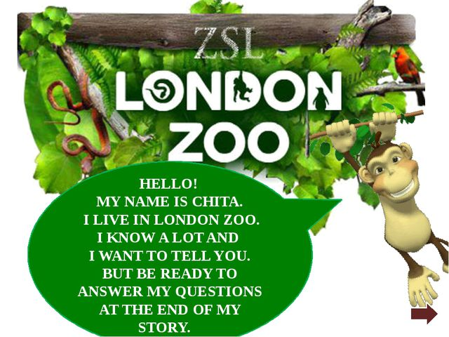 HELLO! MY NAME IS CHITA. I LIVE IN LONDON ZOO. I KNOW A LOT AND I WANT TO TEL...