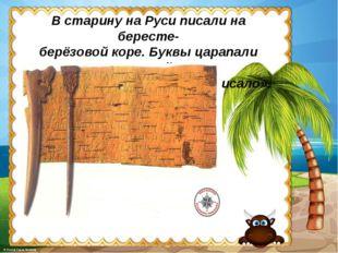 В старину на Руси писали на бересте- берёзовой коре. Буквы царапали острой па