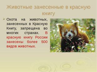 Животные занесенные в красную книгу Охота на животных, занесенных в Красную