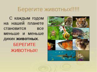 Берегите животных!!!!! С каждым годом на нашей планете становится все меньше