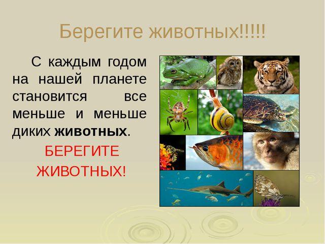 Берегите животных!!!!! С каждым годом на нашей планете становится все меньше...