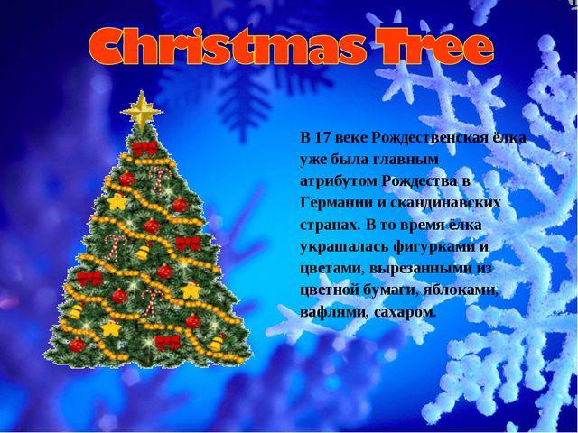 В 17 веке Рождественская ёлка уже была главным атрибутом Рождества в Германии...