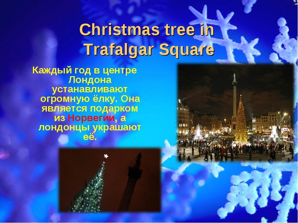 Christmas tree in Trafalgar Square Каждый год в центре Лондона устанавливают...