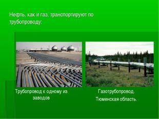 Нефть, как и газ, транспортируют по трубопроводу: Трубопровод к одному из зав
