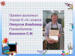 Проект выполнил Ученик 9 «А» класса Петухов Владимир Руководитель: Банников