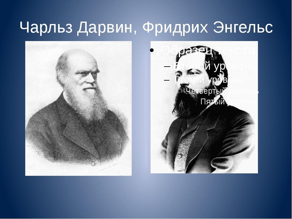 Чарльз Дарвин, Фридрих Энгельс