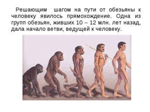 Решающим шагом на пути от обезьяны к человеку явилось прямохождение. Одна из