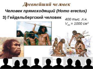 Древнейший человек 400 тыс. л.н. Vгм = 1000 см3 Человек прямоходящий (Homo er