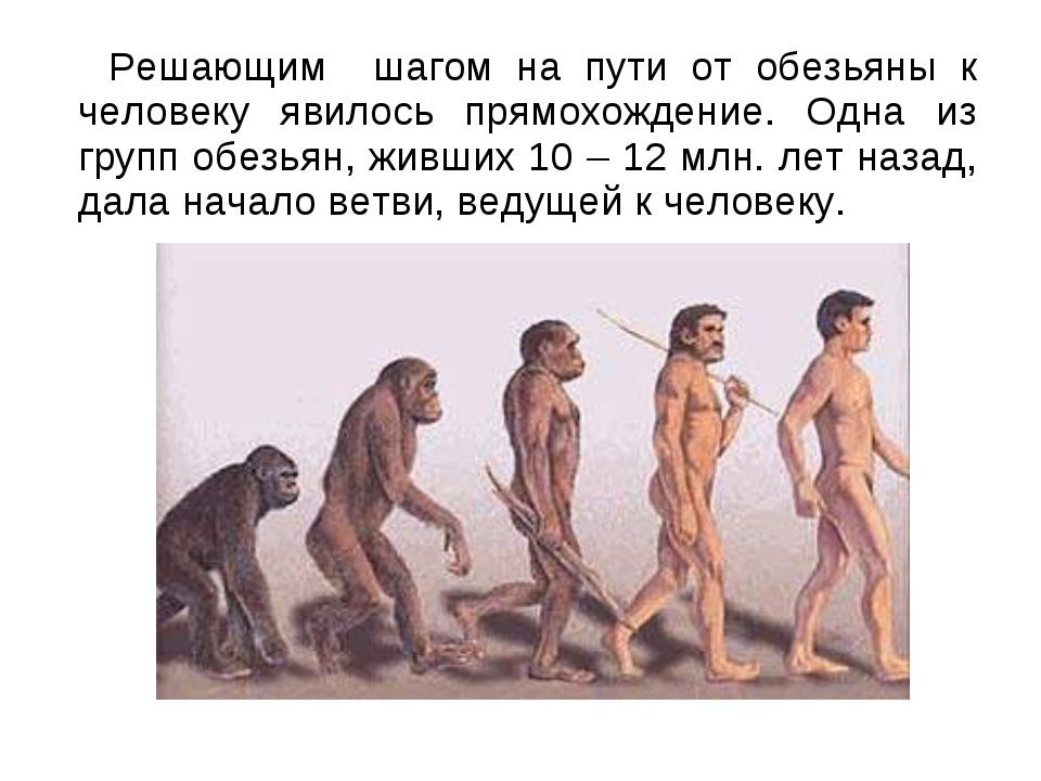 Решающим шагом на пути от обезьяны к человеку явилось прямохождение. Одна из...