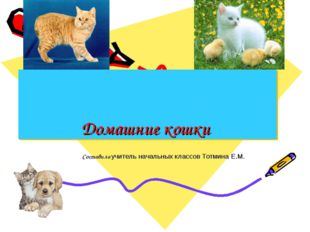 Домашние кошки Составила учитель начальных классов Тотмина Е.М.