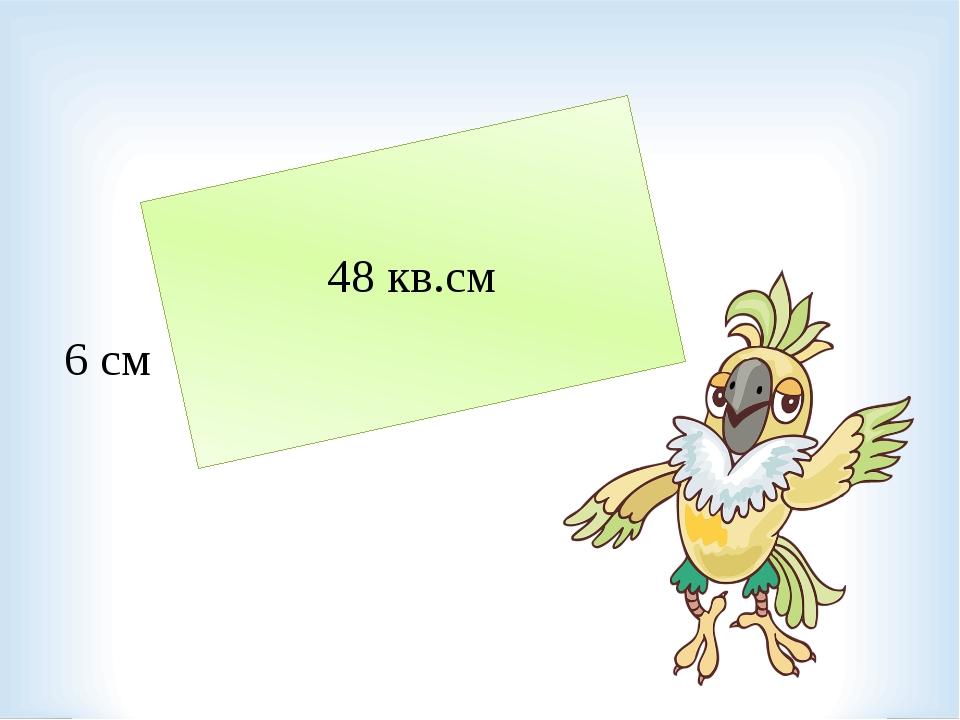 6 см 48 кв.см