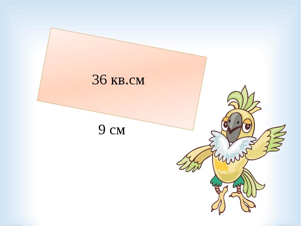 9 см 36 кв.см