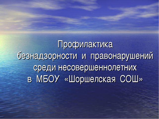 Профилактика безнадзорности и правонарушений среди несовершеннолетних в МБОУ...