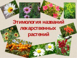 Этимология названий лекарственных растений