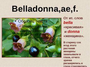 Belladonna,ae,f. От ит. слов bella «красивая» и donna «женщина». В старину со
