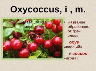 Oxycoccus, i , m. Название образовано от греч. слов: oxys «кислый» и coccos «