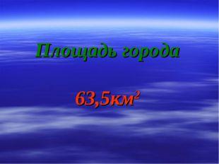 Площадь города 63,5км2