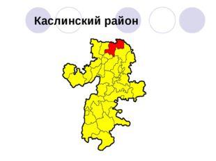 Каслинский район
