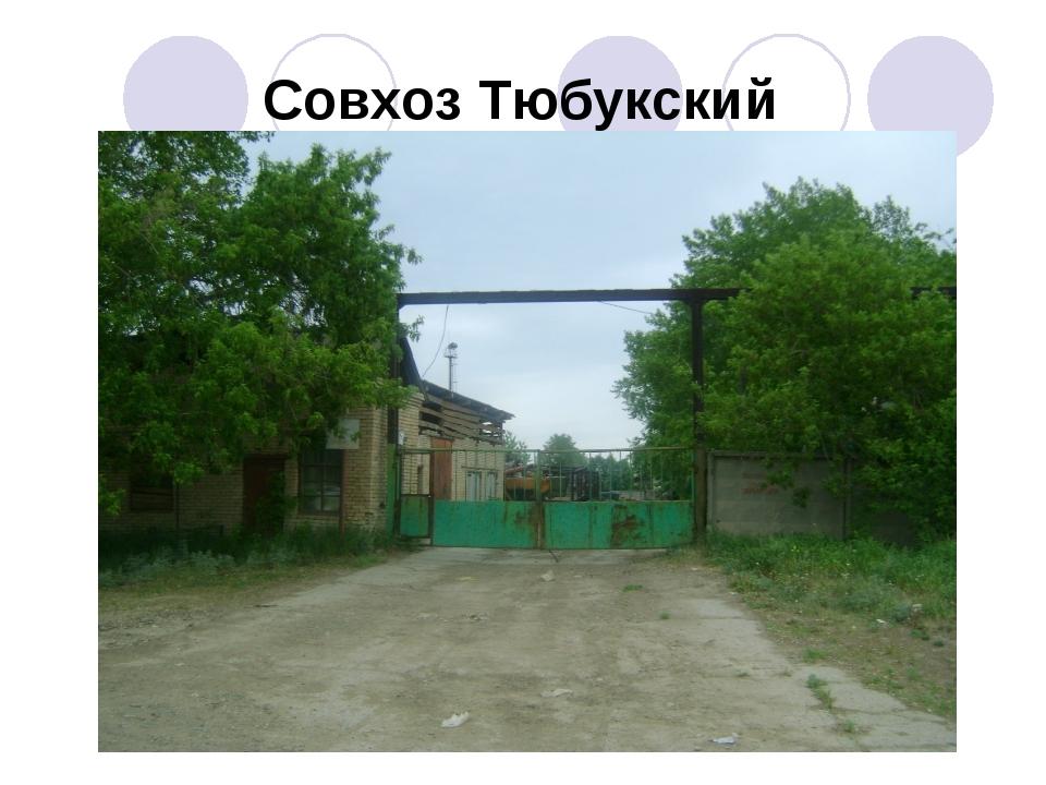 Совхоз Тюбукский