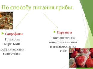 По способу питания грибы: Паразиты Поселяются на живых организмах и питаются