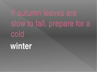If autumn leaves are slow to fall, prepare for a cold winter