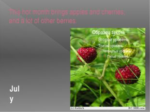 This hot month brings apples and cherries, and a lot of other berries. July