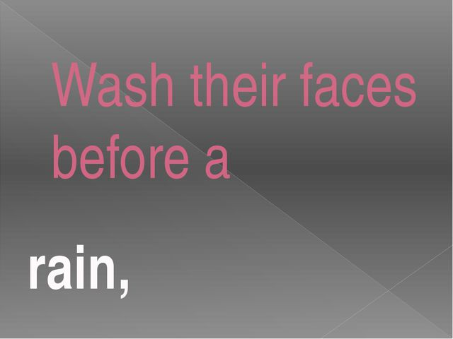 Wash their faces before a rain,