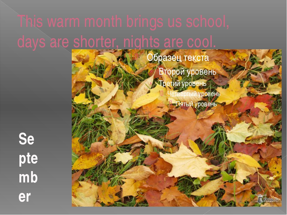 This warm month brings us school, days are shorter, nights are cool. September