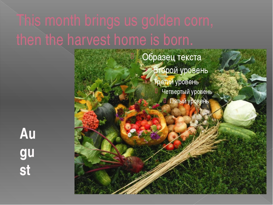 This month brings us golden corn, then the harvest home is born. August