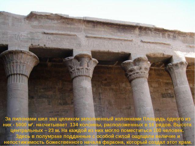 За пилонами шел зал целиком заполненный колоннами Площадь одного из них - 500...