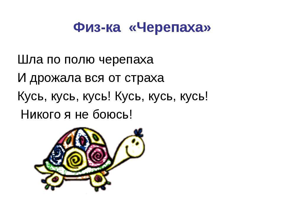 Физ-ка «Черепаха» Шла по полю черепаха И дрожала вся от страха Кусь, кусь, ку...