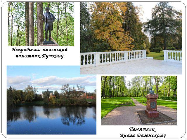Памятник Князю Вяземскому Непривычно маленький памятник Пушкину