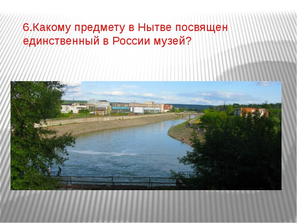 6.Какому предмету в Нытве посвящен единственный в России музей?