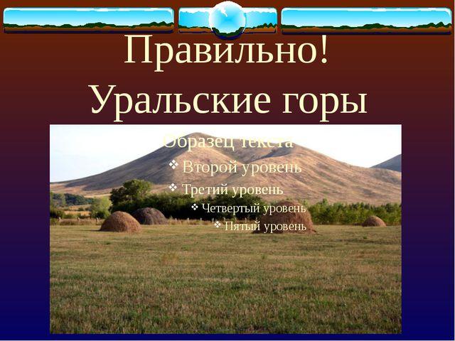 Высочайшая вершина России?
