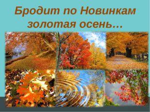 Бродит по Новинкам золотая осень…