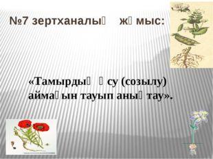 №7 зертханалық жұмыс: «Тамырдың өсу (созылу) аймағын тауып анықтау».