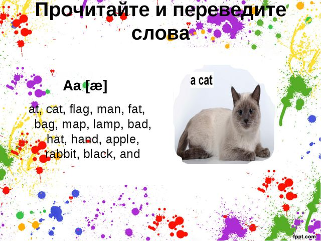 Прочитайте и переведите слова   Aa [æ] at, cat, flag, man, fat, bag, map, lam...